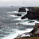 Shetland Islands - Scotland by Sherri Fink