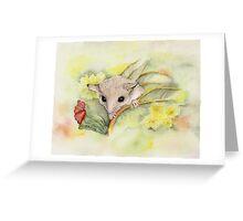 Western Pygmy Possum Greeting Card