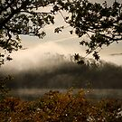 Morning Mist by Jessica Smith