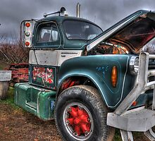 International Truck by Leigh Monk