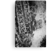 Cross Section A Canvas Print