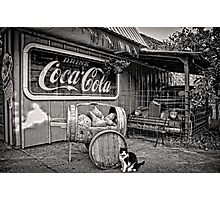 The Cat,Cart,Car and Coca-Cola Photographic Print