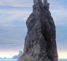 Rialto Seastack (La Push, Washington) by Brendon Perkins