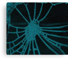 Frosted Spider Web Canvas Print