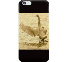 Swan Conductor iPhone Case/Skin