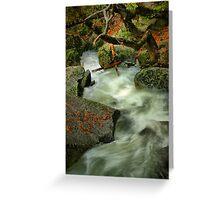 River Diversion Greeting Card