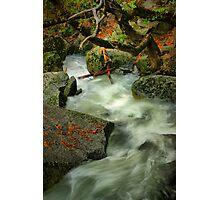 River Diversion Photographic Print