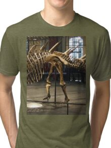 Super Kentrosaurus Tri-blend T-Shirt