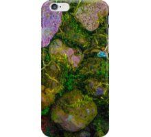 Natures Natural Niche iPhone Case/Skin
