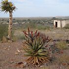Hunting veld, a view to die for by filiola
