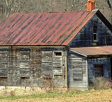 Old and Lonely by Chuck Chisler