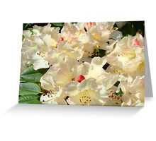 Rhododendrons Flowers Garden Yellow art prints Baslee Troutman Greeting Card