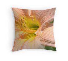 Peach Sorbet Throw Pillow