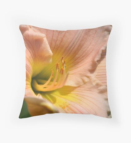 Open for Viewing Throw Pillow
