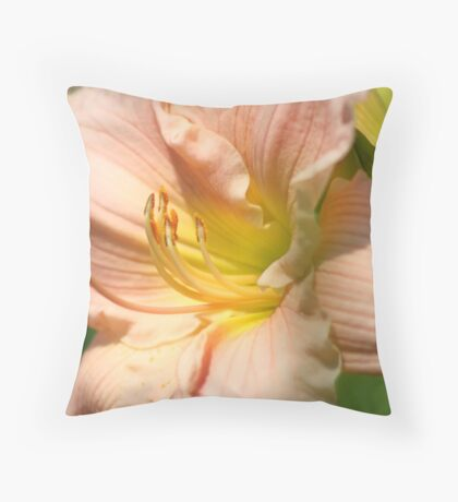 There's More to Folllow Throw Pillow