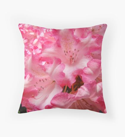 Summer Rhododendron Flowers Pink White art prints Throw Pillow