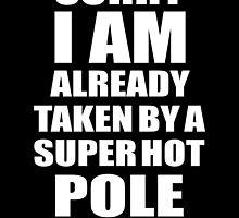SORRY I AM ALREADY TAKEN BY A SUPER HOT POLE DANCER by badassarts