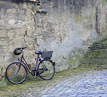 Leaning Bicycle by Dawn Crouse