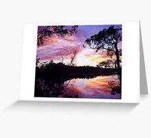 morning creek scene Greeting Card