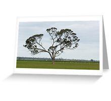Wonderful Trees 5 crop Greeting Card