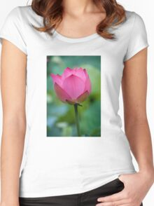 Purity Rose Women's Fitted Scoop T-Shirt