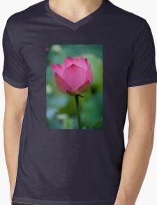 Purity Rose Mens V-Neck T-Shirt