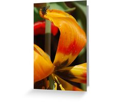 Beauty and the Pest Greeting Card