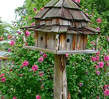 Delux Bird House~ by virginian