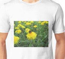 Bumble bee on dandelion (2) Unisex T-Shirt