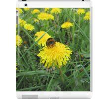 Bumble bee on dandelion (2) iPad Case/Skin