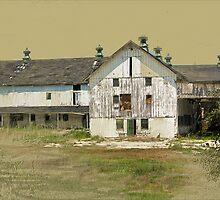 Barn No. 1 Long Green Road Baltimore County by Sarah Butcher