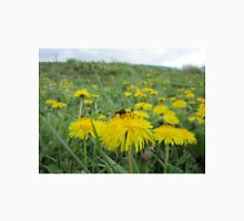 Bee on dandelion (2) Unisex T-Shirt