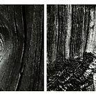 madera by vampvamp