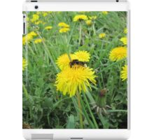 Bee on dandelion iPad Case/Skin