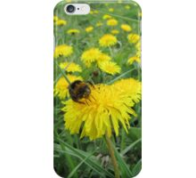 Bumble bee on dandelion iPhone Case/Skin