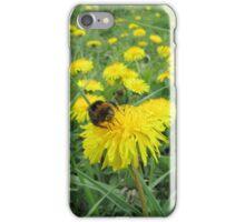 Bumble bee on dandelion iPhone Case/Skin