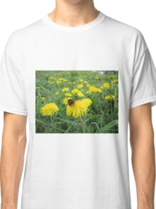 Bumble bee on dandelion Classic T-Shirt