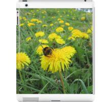 Bumble bee on dandelion iPad Case/Skin