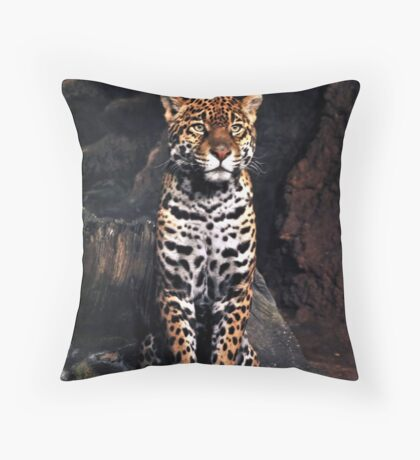 "The name is ""Stella"" darling. Throw Pillow"