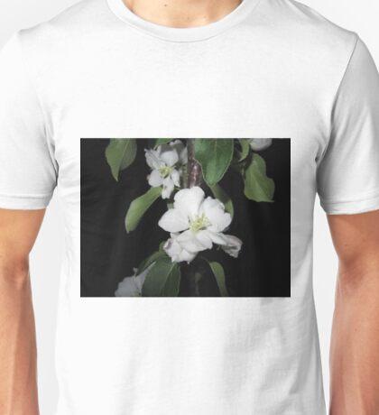 Apple blossom at night (2) Unisex T-Shirt