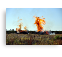 Orchard fire Canvas Print
