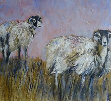 Friendly Swaledales by Sue Nichol