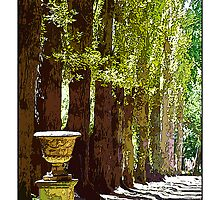 Bolobek Garden, Macedon by prbimages