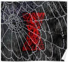 Black Widow Spice Latte Poster