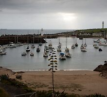 Wollongong Harbour by shireshark