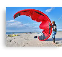 Battle with a kite Canvas Print