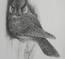 Howard the Owl by yinyung