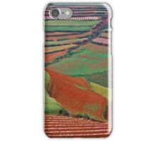 Red Land 06 iPhone Case/Skin