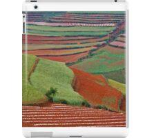 Red Land 06 iPad Case/Skin