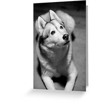 I See The Light... Greeting Card